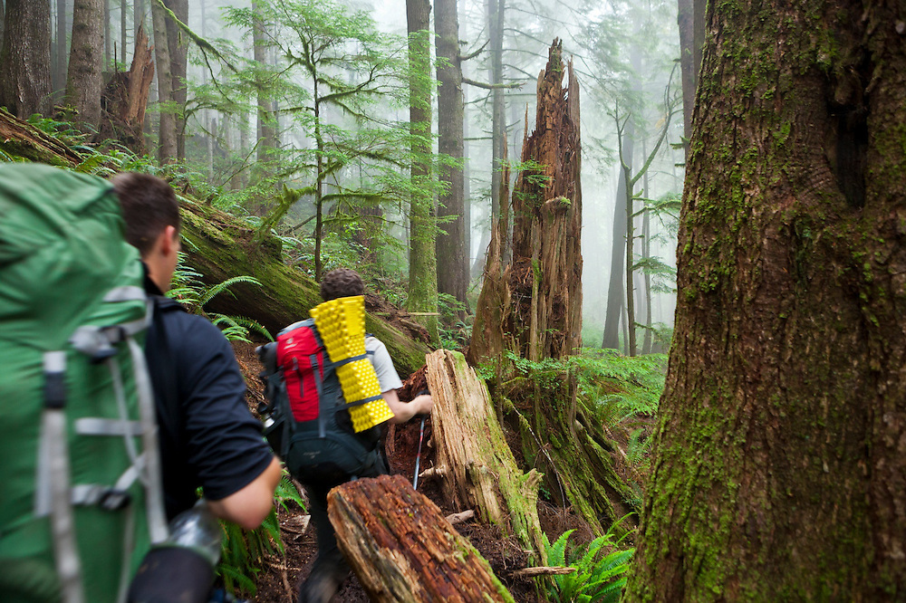 Zach Podell-Eberhard (right) and Henry hike through a forest shrouded in mist along the West Coast Trail, British Columbia, Canada.