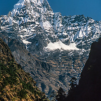 Mount Kusum Khangri towers above forests in the Dudh Kosi River gorge, Khumbu Region,  Nepal.
