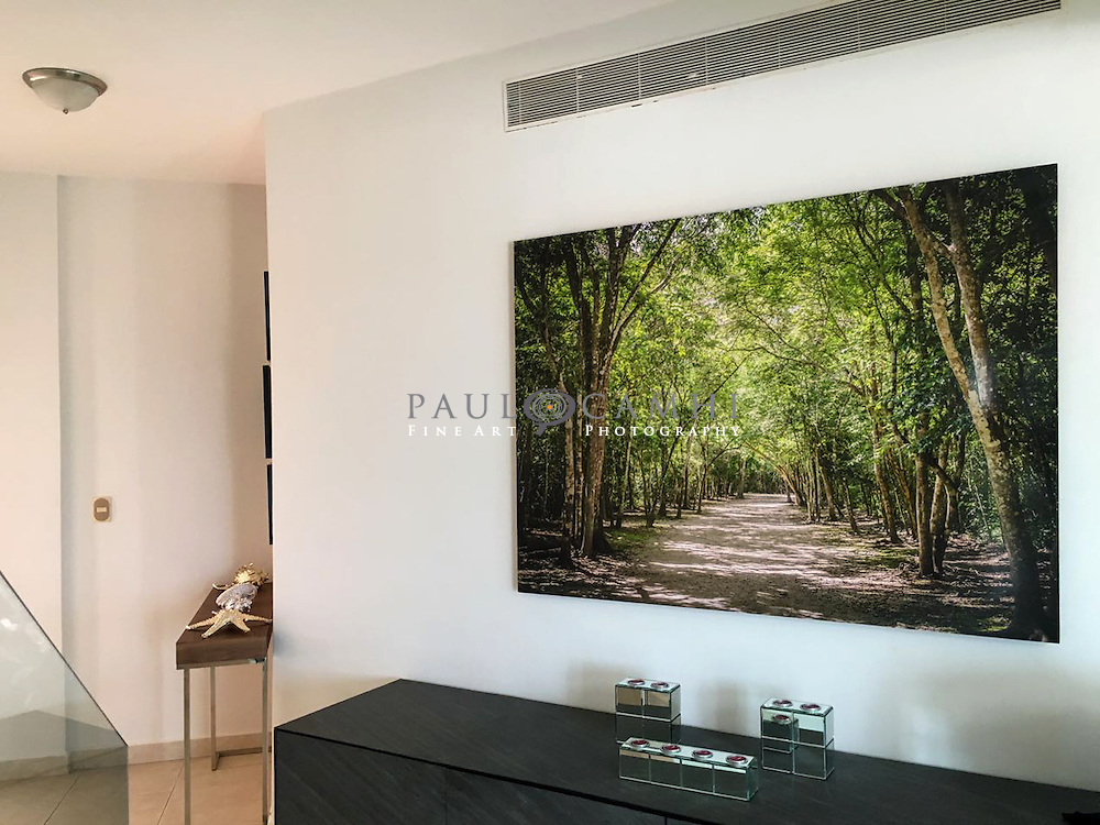 Limited edition Fine Art Photography, pigment ink giclée print, dated and signed photography for decoration. Casa Marquez.