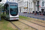 Tram tracks running over grass surface through city streets Rotterdam, Netherlands