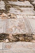 Israel, Lower Galilee, Zippori National Park The city of Zippori (Sepphoris) A Roman Byzantine period city with an abundance of mosaics The Orpheus Mosaic
