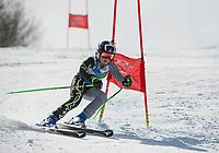 Niche Invitational GS U14 mens 2nd run.  ©2018 Karen Bobotas Photographer