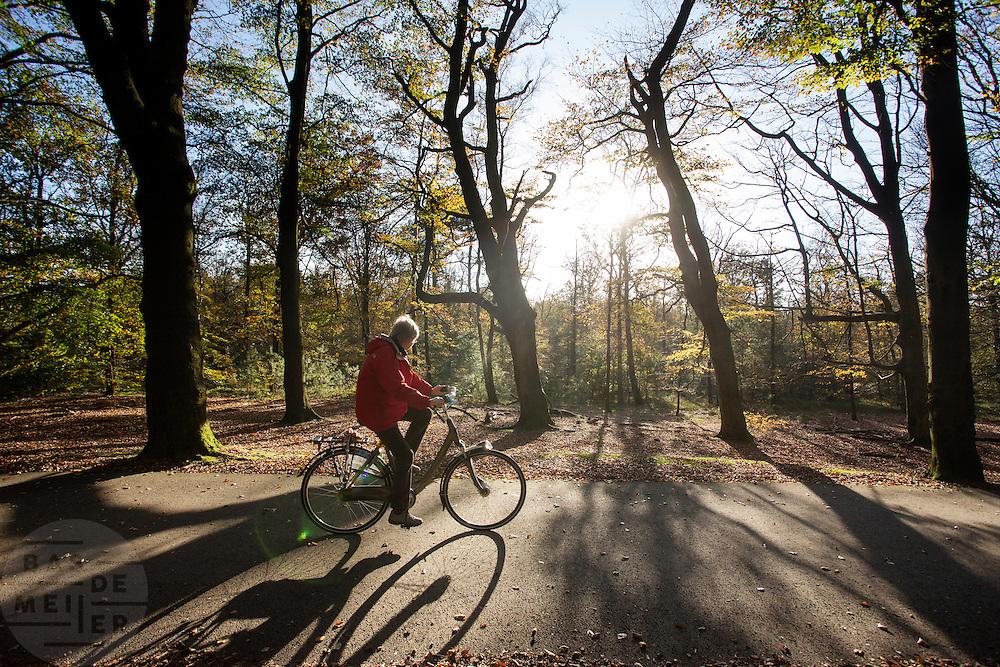 Bij Woudenberg geniet een vrouw van het mooie herfstweer op de fiets.<br /> <br /> Near Woudenberg a cyclist enjoys the nice autumn weather.
