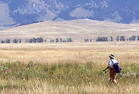 NEWS&GUIDE PHOTO / BRADLY J. BONER.A fisherman walks across the fields of the National Elk Refuge after fishing Flat Creek on Friday.  Fishing opened on Flat Creek on August 1.