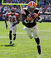 COPYRIGHT DAVID RICHARD.Cleveland receiver Braylon Edwards pulls in a 37-yard touchdown pass from Derek  Anderson yesterday in the fourth quarter. Defending on the play is the Bengals' Leon Hall..The Cleveland Browns defeated visiting Cincinnati 51-45, Sunday, September 16, 2007..