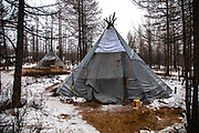 A traditional Tsaatan winter camp and teepee made with wooden poles and canvas, Khovsgol, Mongolia