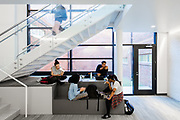 School of Dance at University of North Carolina Greensboro | VINES Architecture | Greensboro, North Carolina