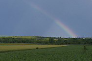Chester, New York - A rainbow appears over a Black Dirt farm after a summer thunderstorm moved through the area on July 28, 2014.