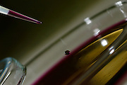 Belo Horizonte_MG, Brasil...Laboratorios da FUNED ( Fundacao Ezequiel Dias ). Na foto detalhe de uma pipeta...FUNED ( Fundacao Ezequiel Dias ) laboratory. In this photo pipette. ..FOTO: LEO DRUMOND / NITRO.