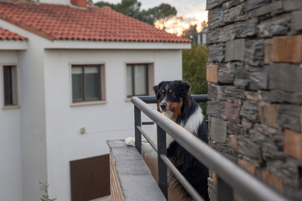 Life at home during the COVID-19 lockdown in Madrid, Spain.