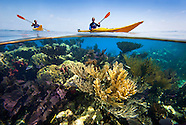 Kayaking the Atolls and Barrier Reef of Belize