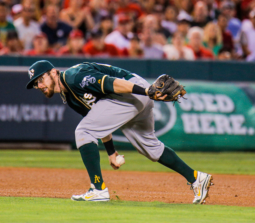 Aug 30 2014 - Anaheim U.S. CA - A's SS # 12 Andy Parrino make a tough play during MLB game between LA Angels and  Oakland Athletics 0-2 lost at Angel Stadium of Anaheim Calif.