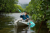 Paddling a kayak through a mangrove channel.  The forested slopes of Kosrae Island are in the background..Kostrae Island, Federated States of Micronesia.