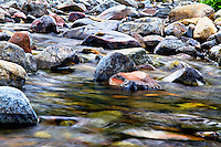 Colorful rocks in a mountain stream