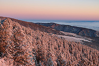 The light of sunrise illuminates one of the first snowfalls of the season in the Bighorn Mountains near Dayton.