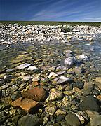 Alaska. ANWR. Itkilyariak Creek on the coastal plain within the 1002 Area.
