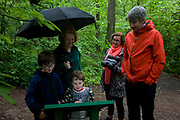 A family reads information from a board in woods south of Sheffield, England UK. The family and friends have stopped to read the local info during a rain shower in the forest of beech trees. The youngest boy seems most interested in what can be read, his tongue between his lips.
