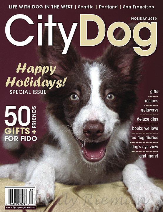 CityDog Magazine cover, 2010 holiday issue