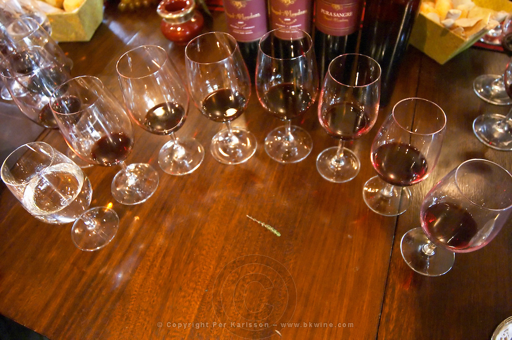 Glasses lined up for a vertical tasting and a branch of thyme The O'Farrell Restaurant, Acassuso, Buenos Aires Argentina, South America