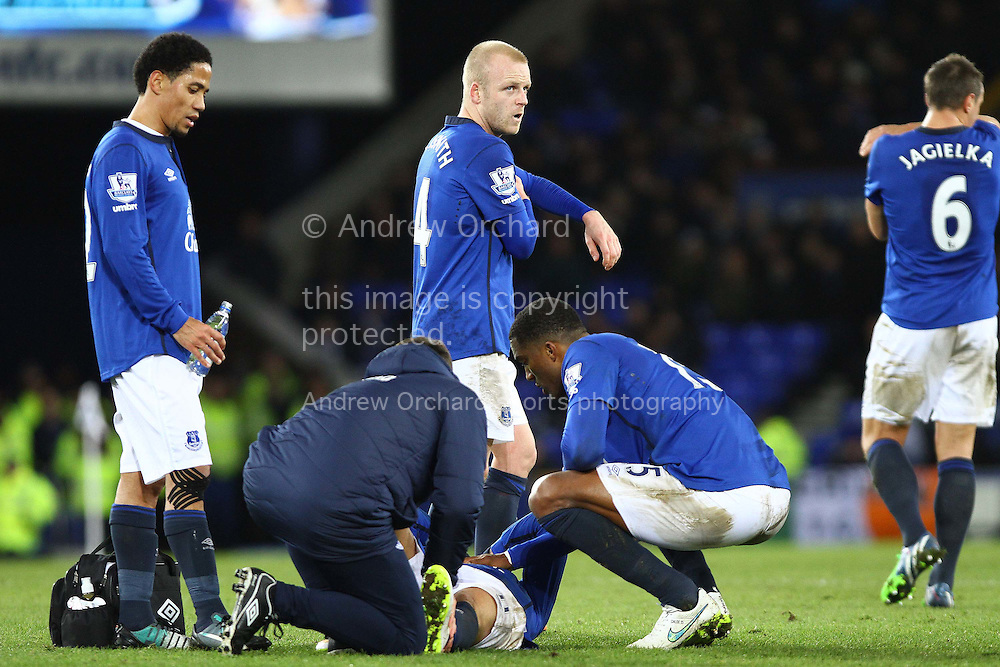 Kevin Mirallas of Everton receives treatment for an injury. Barclays Premier league match, Everton v Queens Park Rangers at Goodison Park in Liverpool, Merseyside on Monday 15th December 2014.<br /> pic by Chris Stading, Andrew Orchard sports photography.