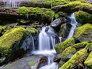 Olympic National Park, Washington.  Cascade below Sol Duc Falls.