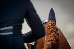 Nieuwenhuis Jeanine, NED, Genua Tc<br /> Nederlands Kampioenschap Dressuur <br /> Ermelo 2017<br /> © Hippo Foto - Dirk Caremans<br /> 15/07/2017