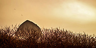 Haystack sunset behind the bare shrubs.