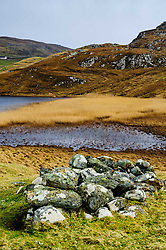 Reed beds at the edge of Loch Dhailbeag, Isle of Lewis, Outer Hebrides, Scotland<br /> <br /> (c) Andrew Wilson | Edinburgh Elite media