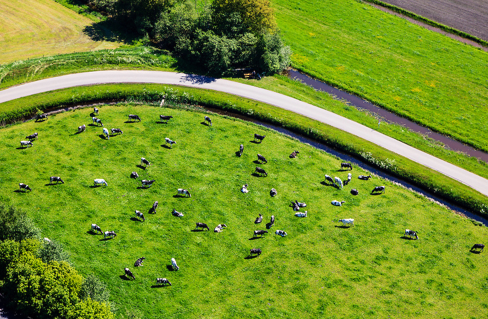 Nederland, Noord-Holland, Hilversum, 27-05-2013; zwart-witte koeien in het voorjaar in het weiland, onder de rook van Vliegveld Hilversum.<br /> Black and white milk cows in a spring medow.<br /> luchtfoto (toeslag op standard tarieven)<br /> aerial photo (additional fee required)<br /> copyright foto/photo Siebe Swart