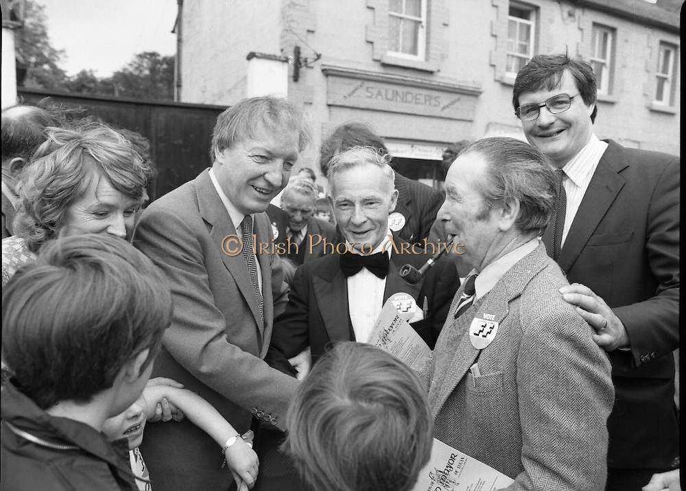 """Taoiseach's Election Campaign.      (N77)..1981..23.05.1981..05.23.1981..23rd May 1981..On the 21st May the Taoiseach, Mr Charles Haughey, dissolved the Dáil and called a general election. Charles Haughey, Garret Fitzgerald and Frank Cluskey were leading their respective parties into a general election for the first time as they had only taken party leadership during the last Dáil..Fianna Fáil had hoped to call the election earlier, but the Stardust Tragedy caused the decision to be deferred...Image of Charles Haughey, Eileen Lemass and Liam Lawler on the campaign trail with supporters in Lucan. Included in the picture is """"Lucan Lord Mayor"""" candidate, Dinny Byrne (bow tie)."""