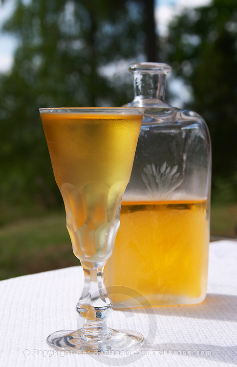Swedish traditional aquavit schnapps glass in pointed form filled to the brim with spiced vodka, brannvin. Frosty ice cold drops on the outside. A glass flask plunta with decorative engravings. Sweden, Europe.