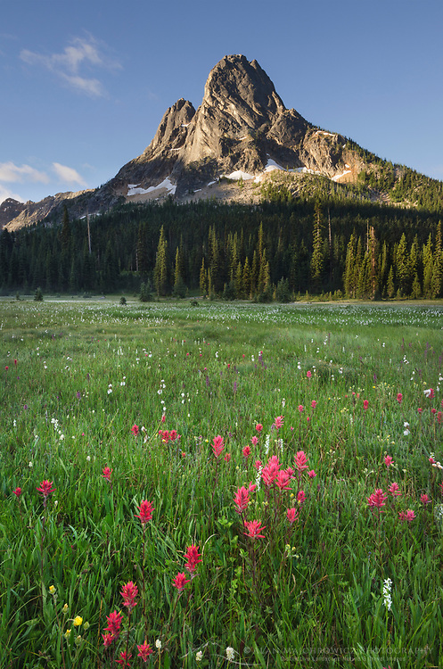 Liberty Bell Mountain seen from meadows of Washington Pass, North Cascades Washington