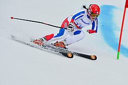 Marie Bochet, Women's Giant Slalom at the 2014 Sochi Winter Paralympic Games, Russia
