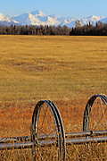 Alaska, Palmer, Mananuska- Susitna Valley, Mananuska Valley, Mat Valley, Mat-Su Valley, Irrigation System put away for the winter with harvested hay field, wooded boundary and snow covered Chugach Mountains in the background