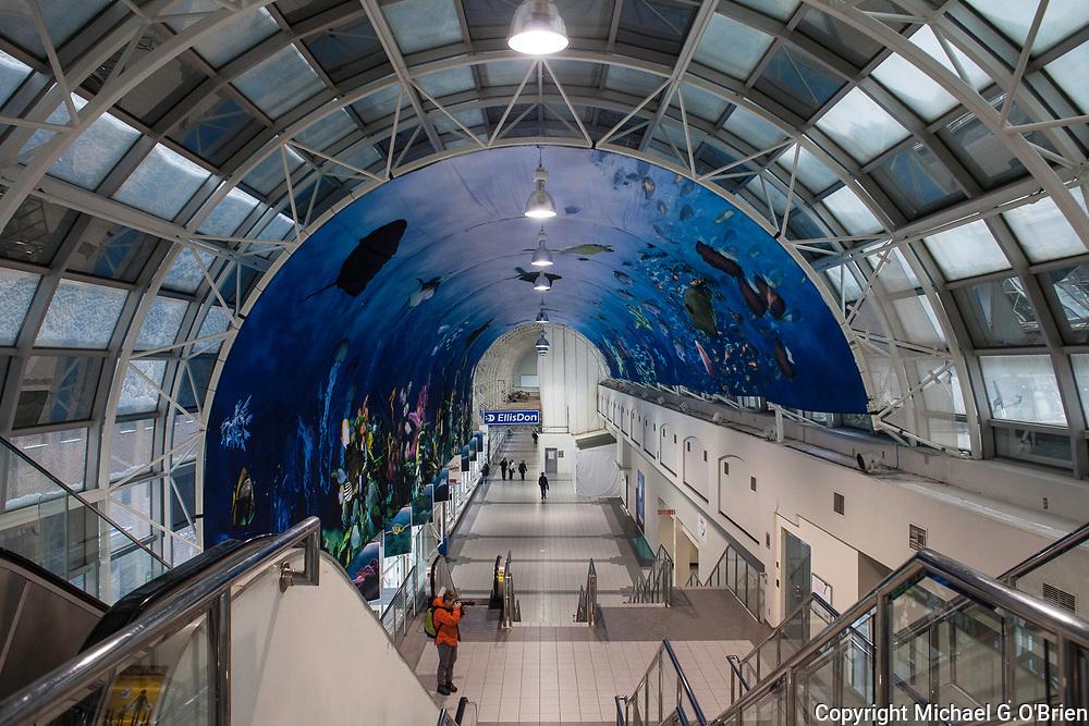 Skywalk with Aquarium artwork on ceiling, near Union Station - Toronto, Canada