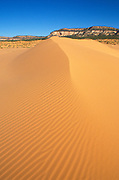 Morning light on sand dunes under the Vermillion Cliffs, Coral Pink Sand Dunes State Park, Utah