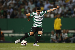 September 1, 2018 - Lisbon, Portugal - Rodrigo Battaglia of Sporting  in action  during Primeira Liga 2018/19 match between Sporting CP vs CD Feirense, in Lisbon, on September 1, 2018. (Credit Image: © Carlos Palma/NurPhoto/ZUMA Press)
