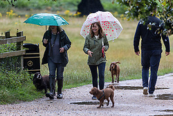 Licensed to London News Pictures. 07/08/202. London, UK. Summer washout. Dog walkers get caught in torrential rain in Richmond Park southwest London today as thunderstorms continue to hit the South East with further showers expected tomorrow. Yellow weather warnings for England have been issued for thunderstorms with heavy rain, and possible flooding as the bad weather is set to continue until Monday. However brighter weather is finally forecast for next week with highs of 23c. Photo credit: Alex Lentati/LNP