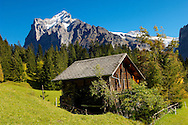 Alpine Pastures with Traditional houses- Swiss Alps, Grindelwald, Switzerland .<br /> <br /> Visit our SWITZERLAND  & ALPS PHOTO COLLECTIONS for more  photos  to browse of  download or buy as prints https://funkystock.photoshelter.com/gallery-collection/Pictures-Images-of-Switzerland-Photos-of-Swiss-Alps-Landmark-Sites/C0000DPgRJMSrQ3U