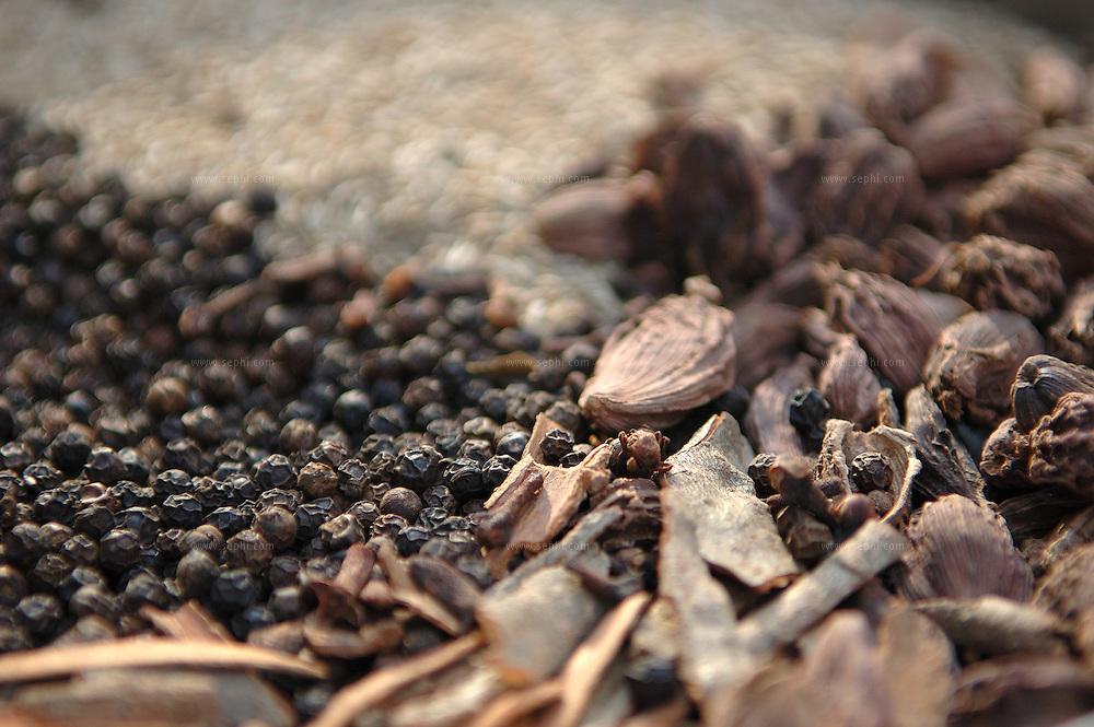 ingredients for making Garam masala drying in the sun - Danya ( coriander), Jeera (cumin seed), Kali mirch (black pepar), Bare ilaychi (cardamom), dal chinni (cinamon), long (cloves),