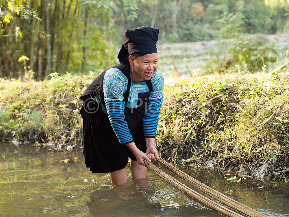 Wearing her traditional clothing, Yua, a Hmong Du woman washes the hemp (cannabis sativa) fibre in the river, Ban Vieng Hang, Houaphan province, Lao PDR. Making hemp fabric is a long and laborious process; the end result is a strong durable cloth with qualities similar to linen which the Hmong Du women make into skirts, for their traditional clothing. In Lao PDR, hemp is now only cultivated in remote mountainous areas of the north.