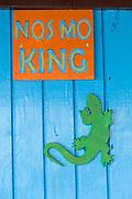 No smoking sign and a green lizard hanging on a blue wall, Little Corn Island, Nicaragua