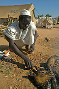 A man roasts a goat head in the Breidjing Refugee Camp located in Eastern Chad on the Sudanese border. The camp shelters 30,000 people who have fled their homes in Darfur, Sudan.