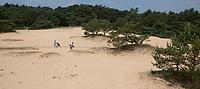 NUNSPEET - Zandverstuiving op Noord 6, Golfbaan RIJK VAN NUNSPEET, COPYRIGHT KOEN SUYK