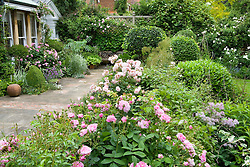 Showing division between terrace and lawn. Ballustrade (hidden) covered with Rosa 'Ispahan' and R. 'Felicia'. Wooden bench seat and decorative paving. High trellis boundary with climbers.