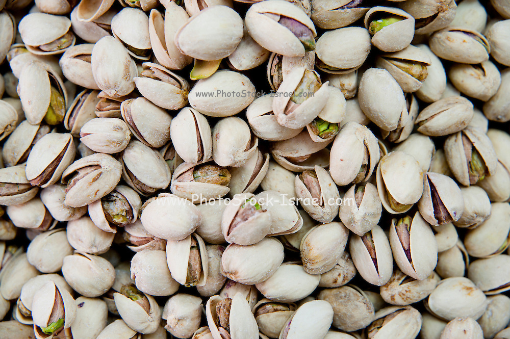 A pile of freshly roasted pistachio nuts