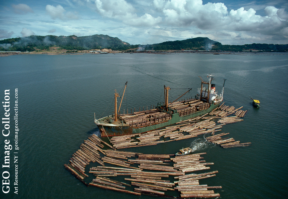 Logs being loaded onto a ship for transport.