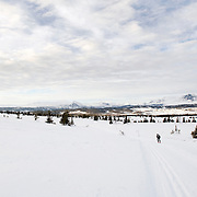 Noorwegen Robru Gol 25 december 2008 20081225 Foto: David Rozing .Wintertafereel, Noorse langlaufer in winterlandschap in omgeving Robru.Wintertime, Nordic walking/ langlaufen near Robru..Foto: David Rozing