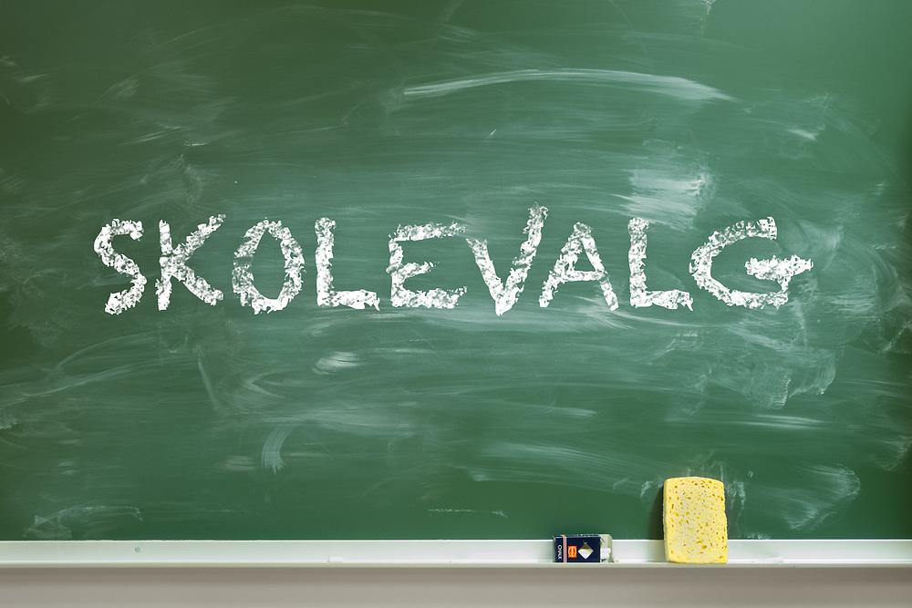 Ordet «skolevalg» skrevet med kritt på grønn skoletavle.