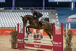 Van Den Broeck Tim, Karan vd Heffinck Z<br /> Pavo Hengsten competitie - Oudsbergen 2021<br /> © Hippo Foto - Dirk Caremans<br />  22/02/2021